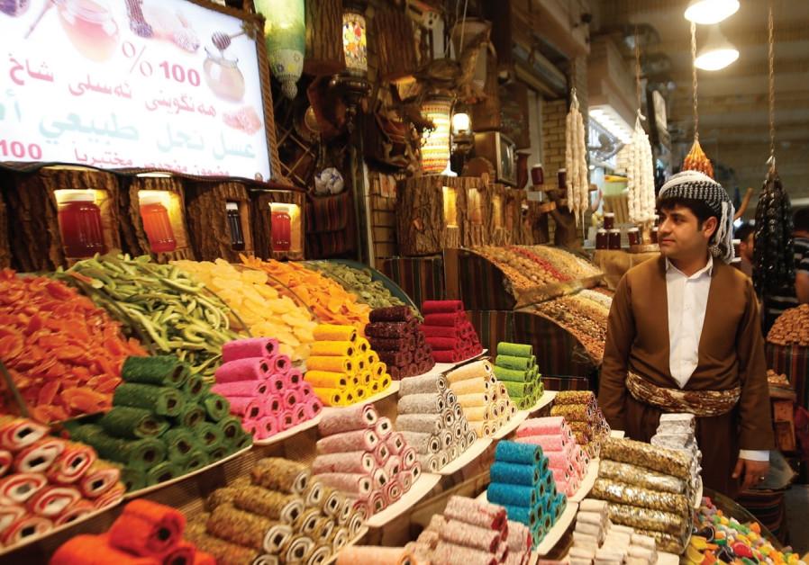Analysis: Can Saudi Arabia reduce Iranian influence in Iraq?