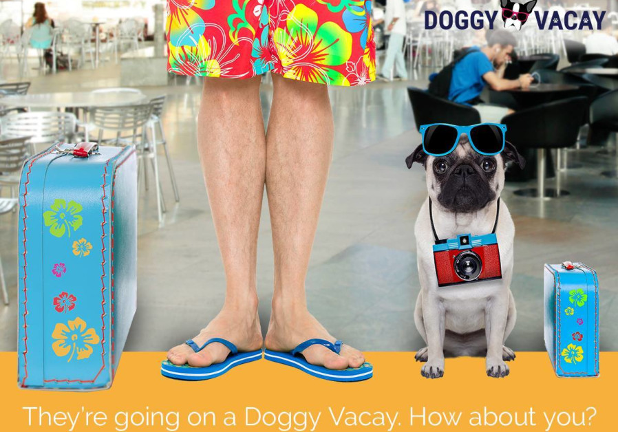 Vibe Israel promotional poster for dog vacation contest