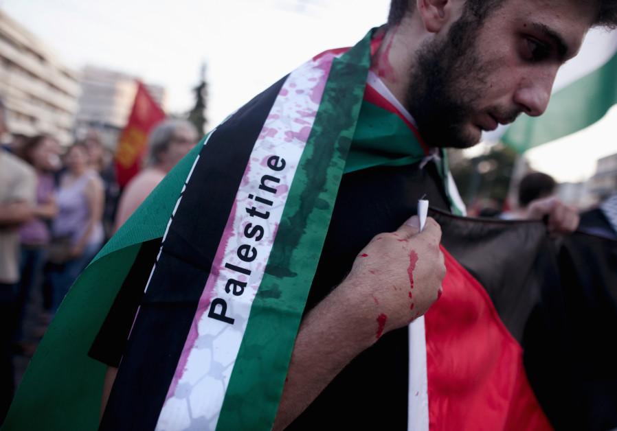 Pro-Palestinian rallier