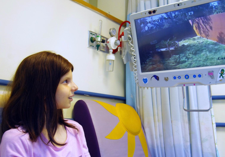 A child looking at the monkeys at the Ramat Gan safari from her hospital bed