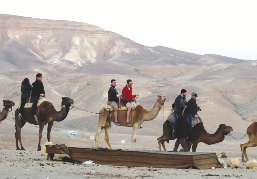 Hitch a ride with a camel caravan at Kfar Hanokdim.