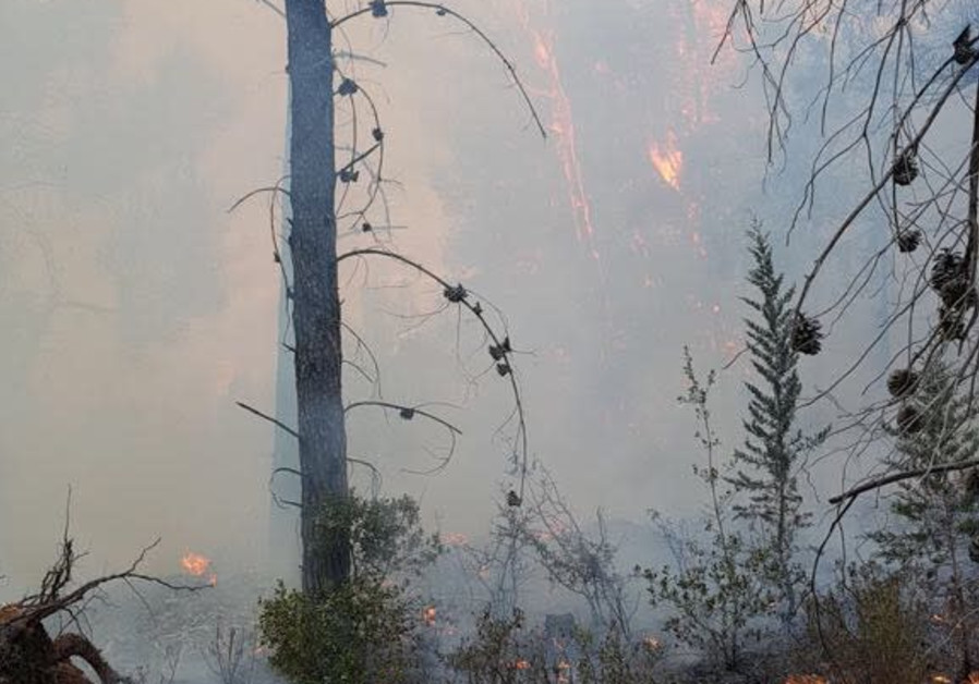 Fires in the Jerusalem HIlls (Photo: KKL-JNF)