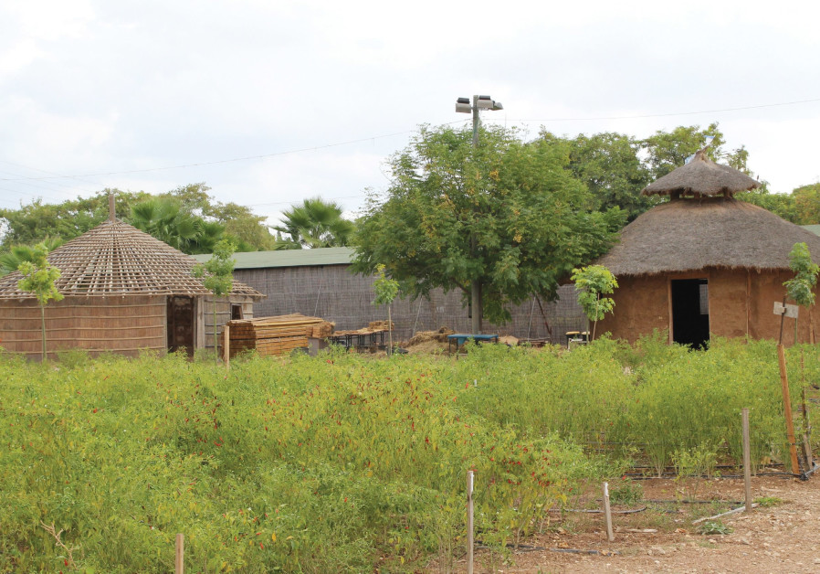 'Gojo' huts and plots of land