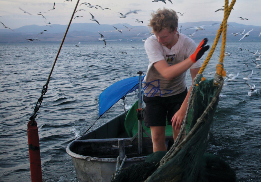 International volunteer working on a fishing boat on the Kinneret
