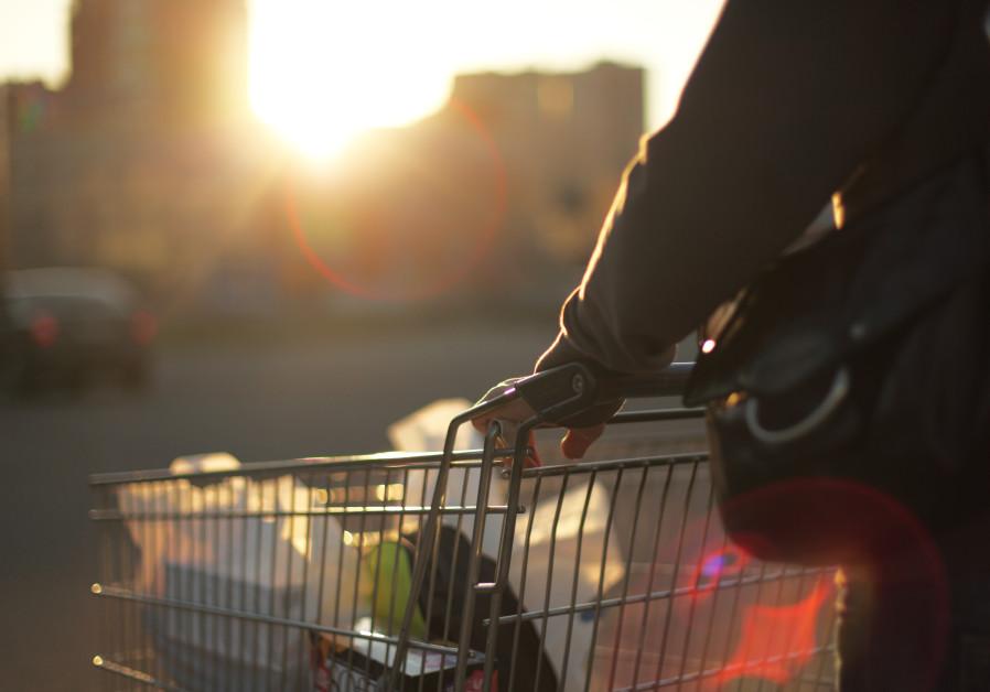 Shopping cart (Illustrative)