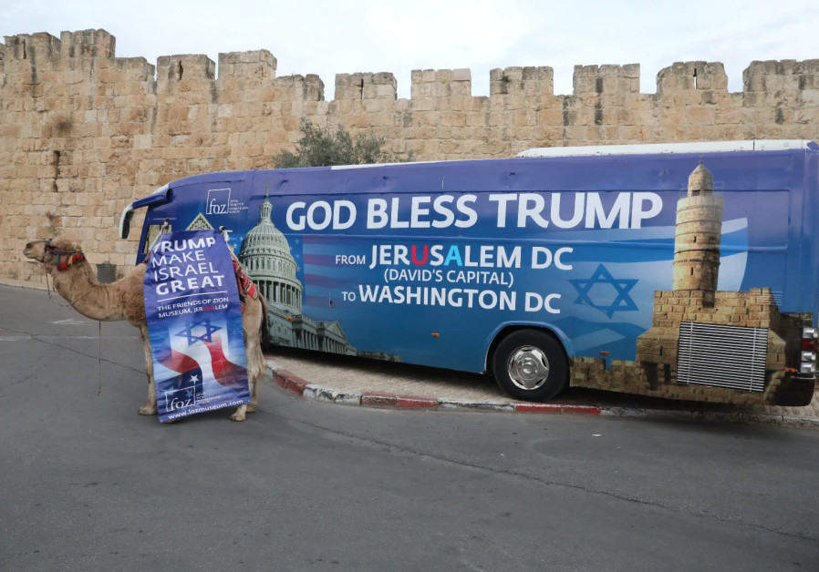 Pro-Trump camel in Jerusalem  (Credit: Yossi Zamir)