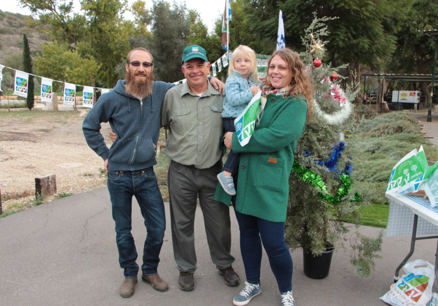 Picking out a tree for Christmas at KKL-JNF's Givat Yeshayahu offices
