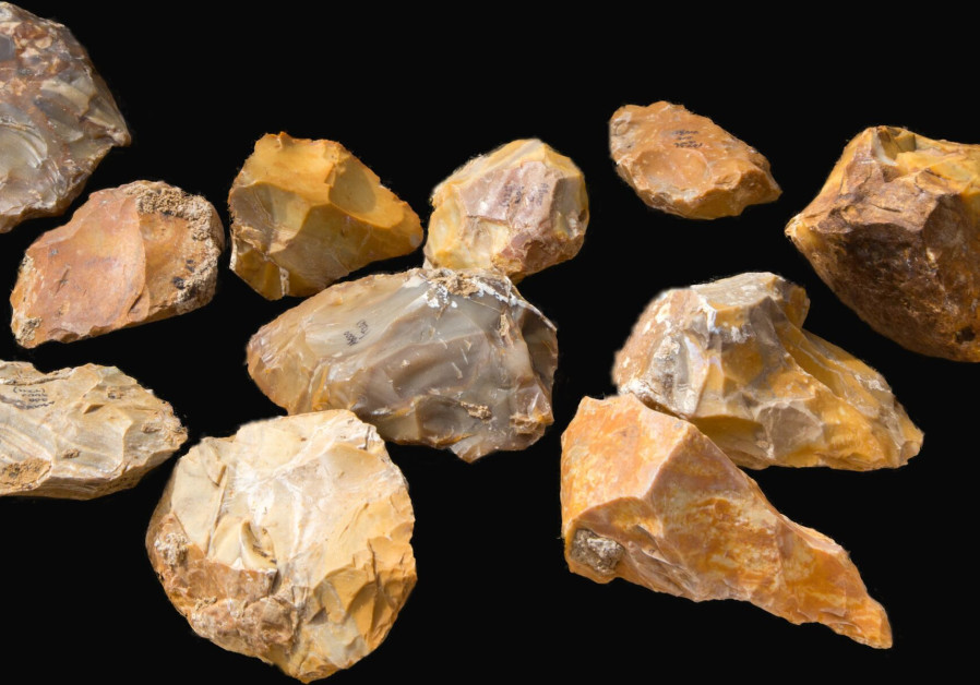 Hand axes found in archaeological site near Jaljulia (Yitzhak Marmelshtein/Israel Antiquities Authority))