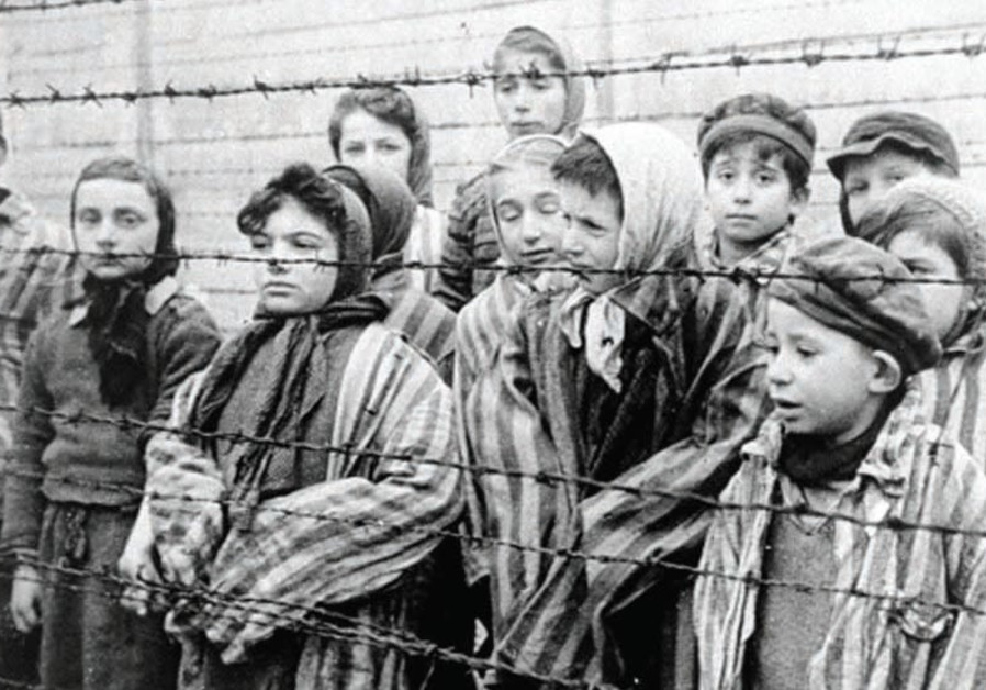 Brain structure change in Holocaust survivors hereditary, study finds