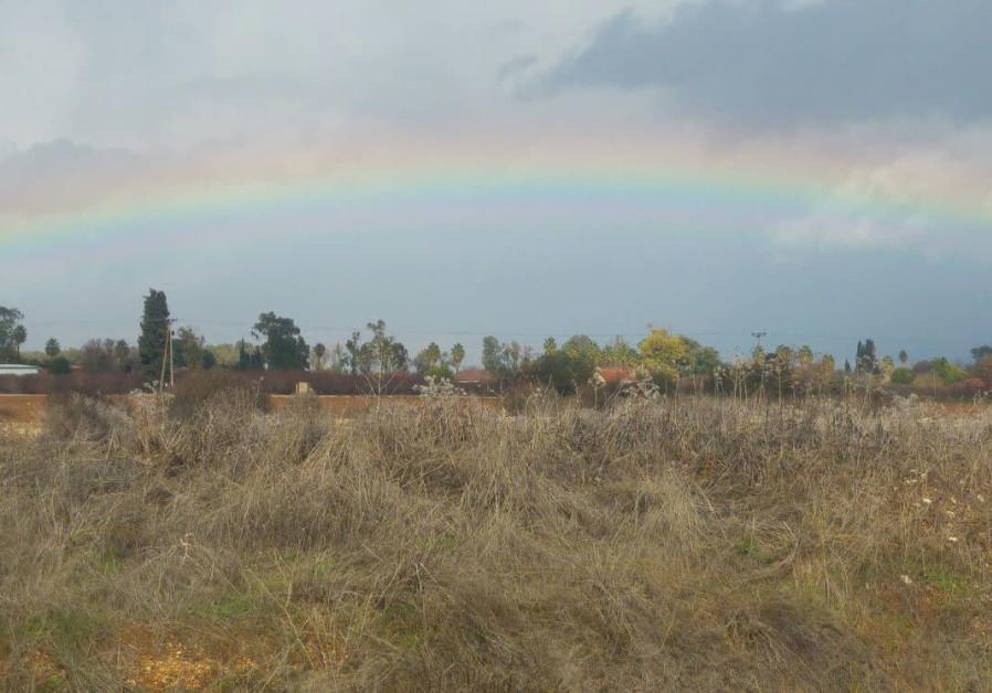 A rainbow over Nahal Amud (Photo: The Kinneret Authority).