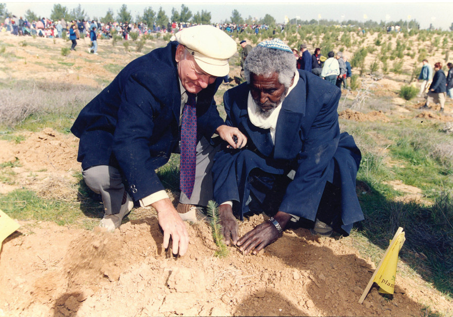 Recent immigrants celebrate Tu Bishvat by planting trees in Yatir Forest near Arad in the 1990s