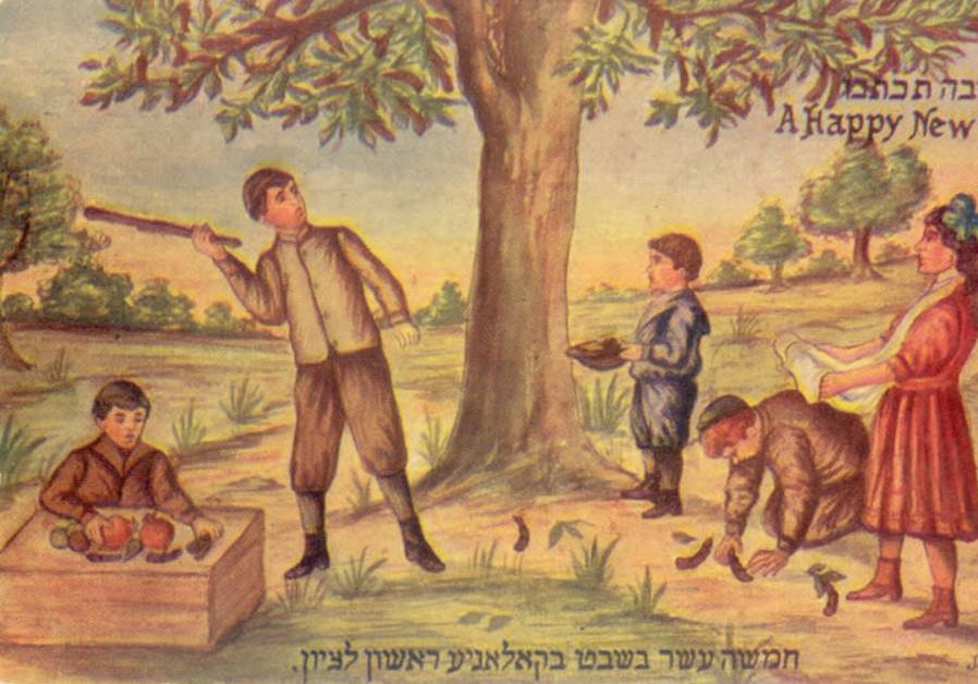 Tu Bishvat in Rishon LeZion from the beginning of the 20th century (ca. 1910)