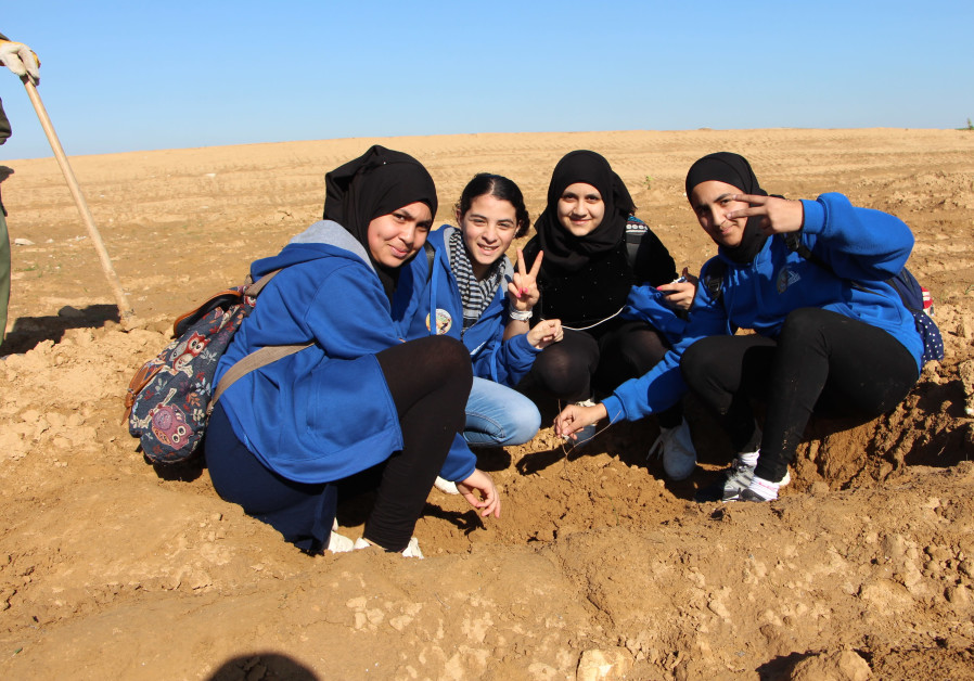 Bedouin students from Rahat's Al-Razi School plant trees for Tu Bishvat in Mishmar HaNegev