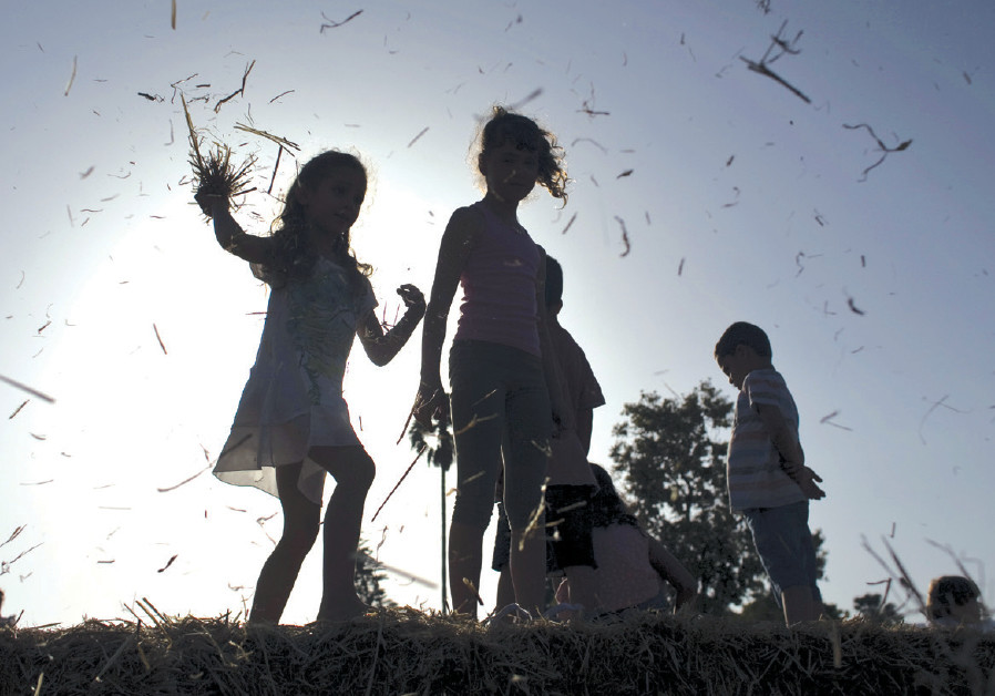 Children play on bales of hay at the annual harvest festival at Kibbutz Deganya Alef in 2015