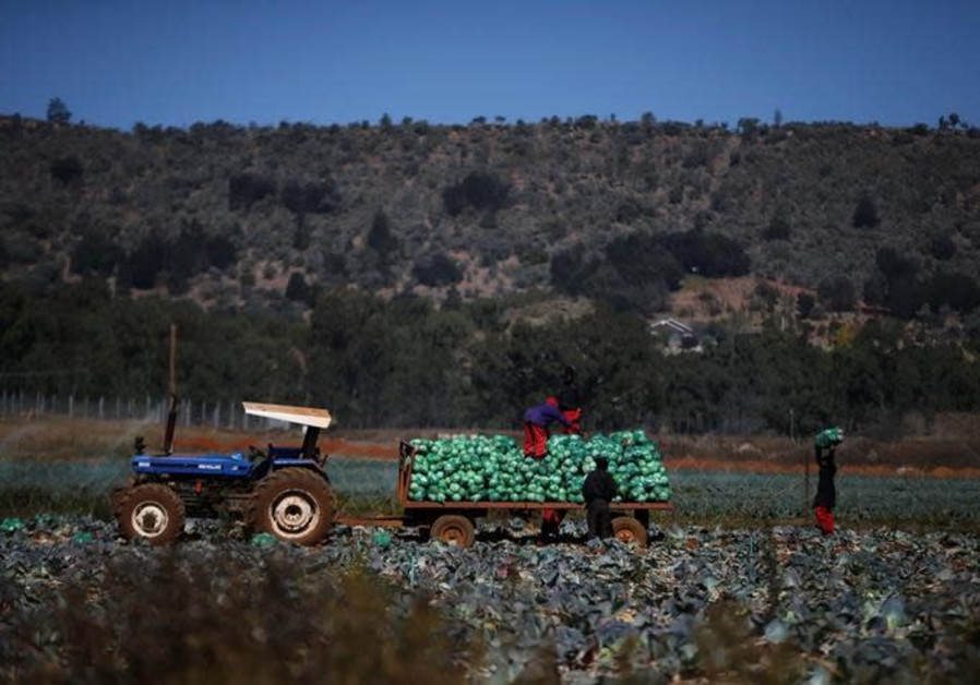 South African Jewish farmers concerned about land expropriation