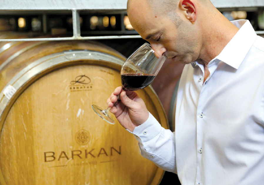 IDO LEWINSOHN, the new winemaker of Barkan Winery