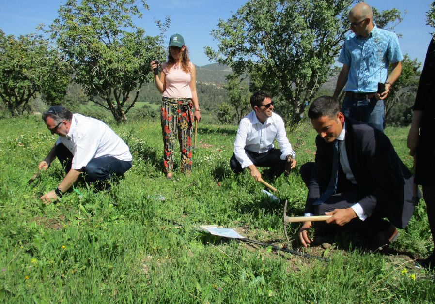 Hungarian Jewish community members and diplomats plant trees at Tzora-President's Forest
