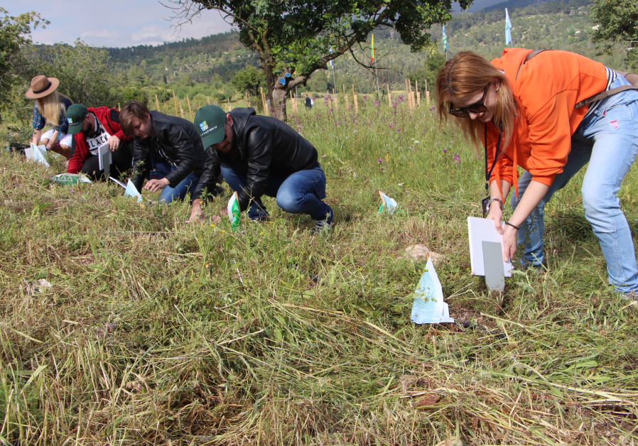 Eurovision 2018 contestants plant trees in Israel's Tzora-Presidents Forest