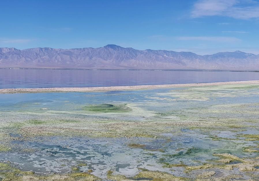 California's Salton Sea