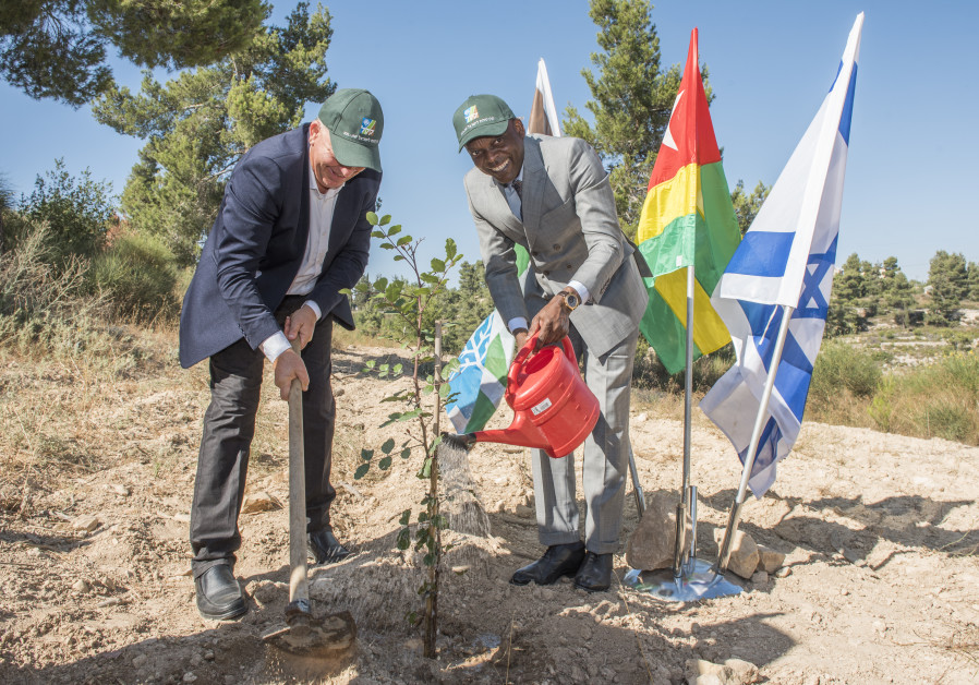Togolese FM Robert Dussey (right) plants a carob tree in the Jerusalem Hills