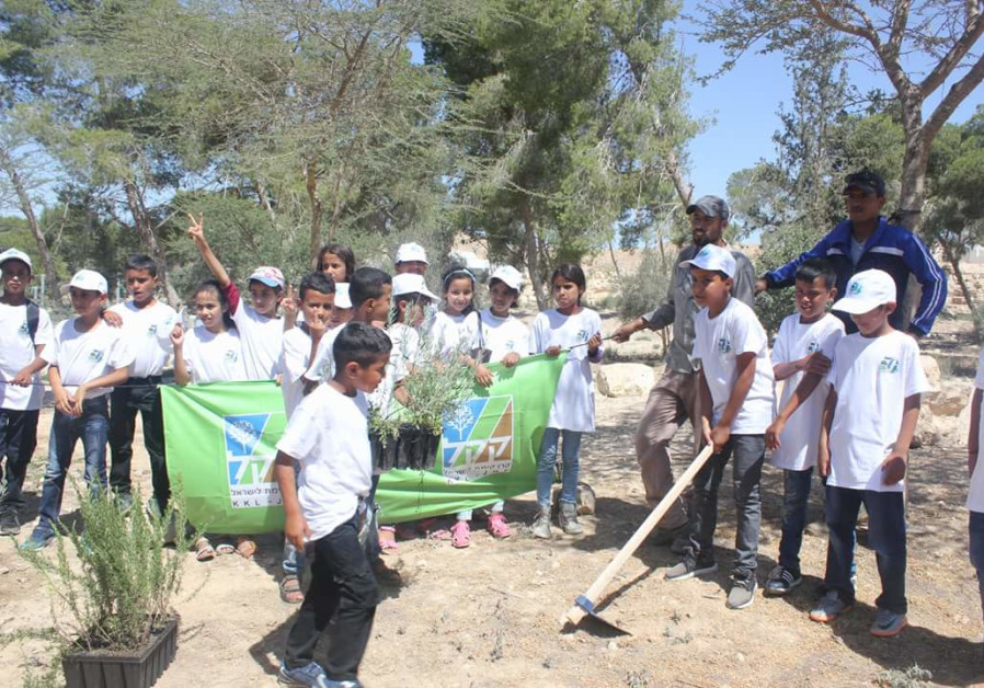 Young Bedouin Forest Trustees to help protect environment