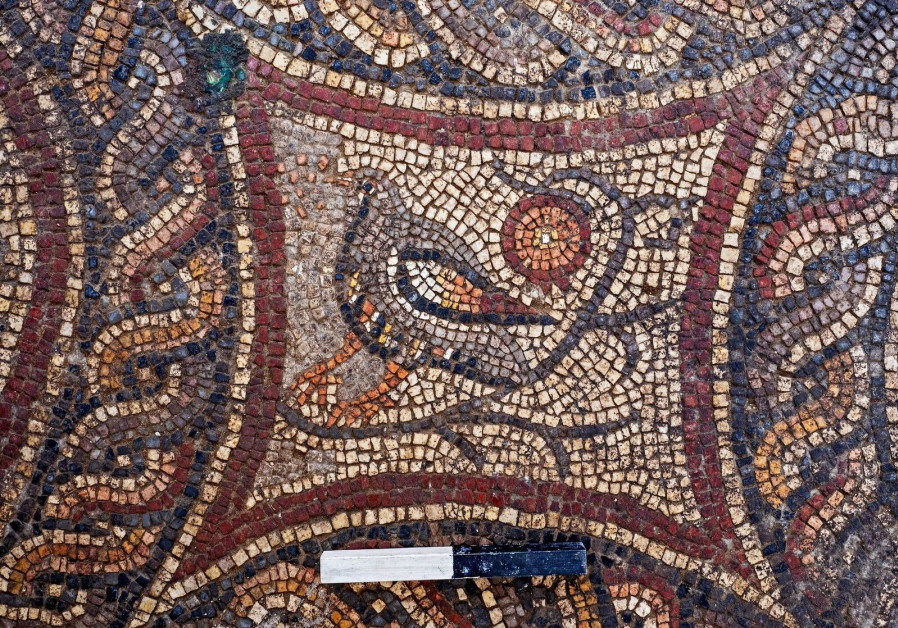 A depiction of a bird in the newly discovered Lod mosaic