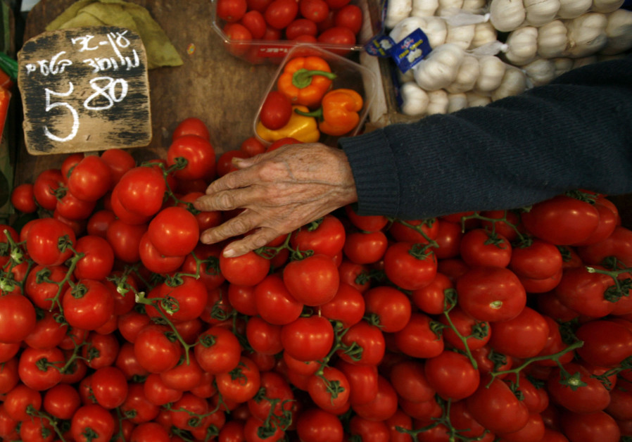 A vendor arranges tomatoes on his stand at the Mahne Yehuda market in Jerusalem (February 9, 2011).