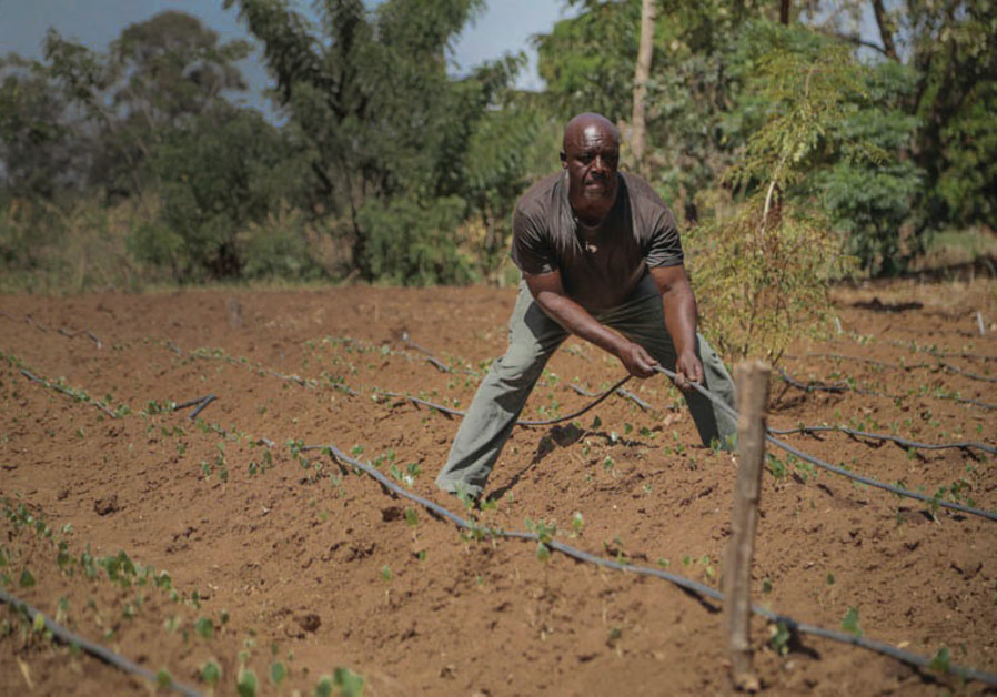A WORKER plows the field in a still from the Christian Broadcasting documentary
