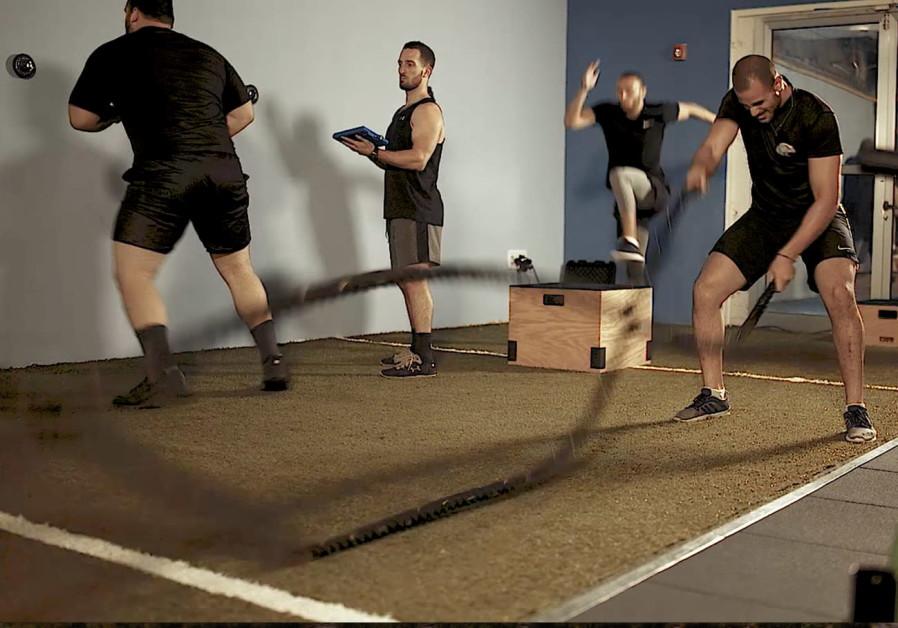 Apex Sport Performance (ASP)
