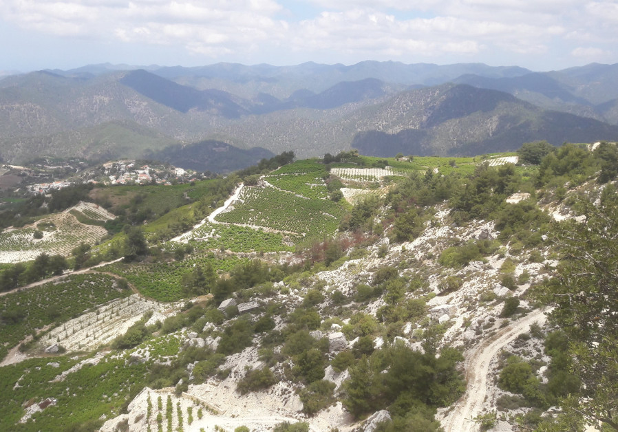 High altitude mountain vineyards belonging to Vouni Panayia Winery.