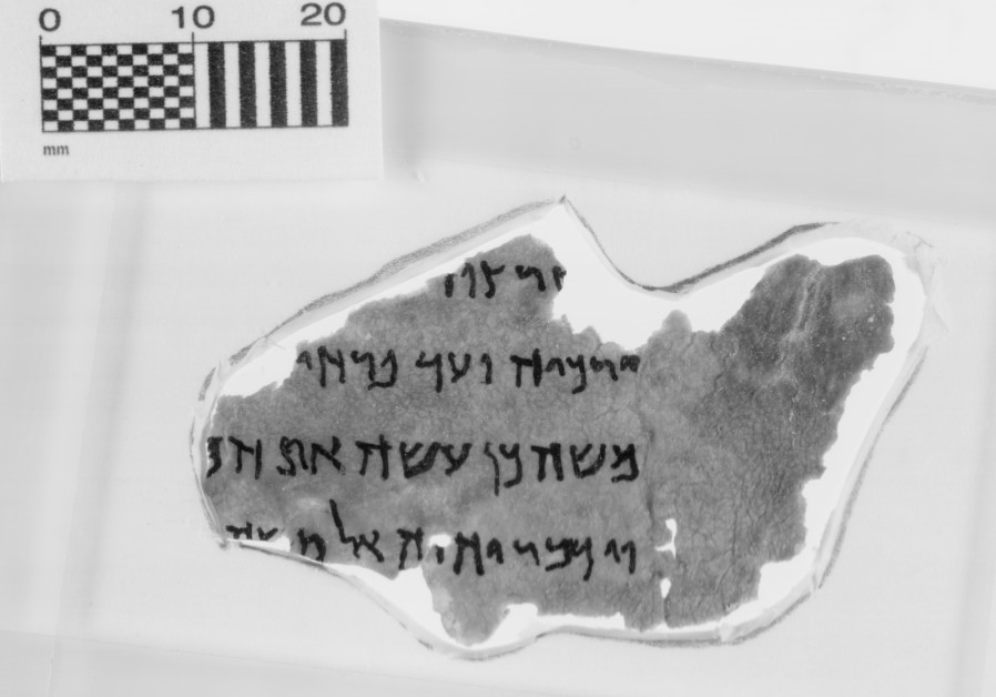 A purported Dead Sea Scroll fragment (Credit: Museum of the Bible)