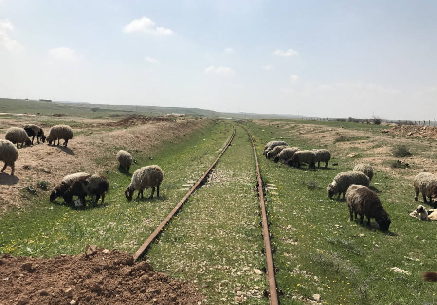 Train tracks south of Mosul in 2017. Many trains in the region are in need of investment to link the