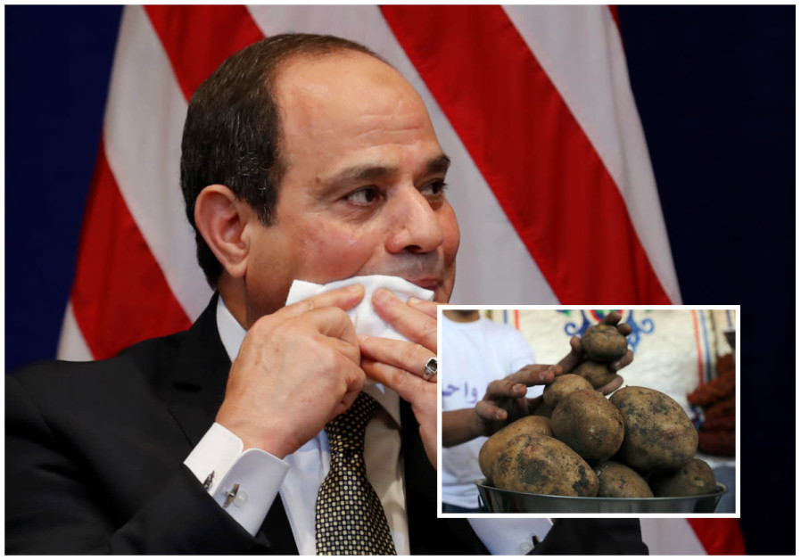 Sisi and potatoes