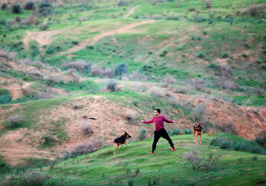 A member of kibbutz plays with his dogs in a field near the border between Israel and Gaza, outside