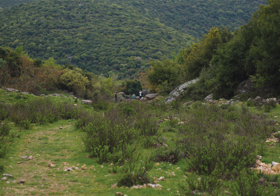 Circling Mount Meron: A beautiful trail showing all angles of landscapes