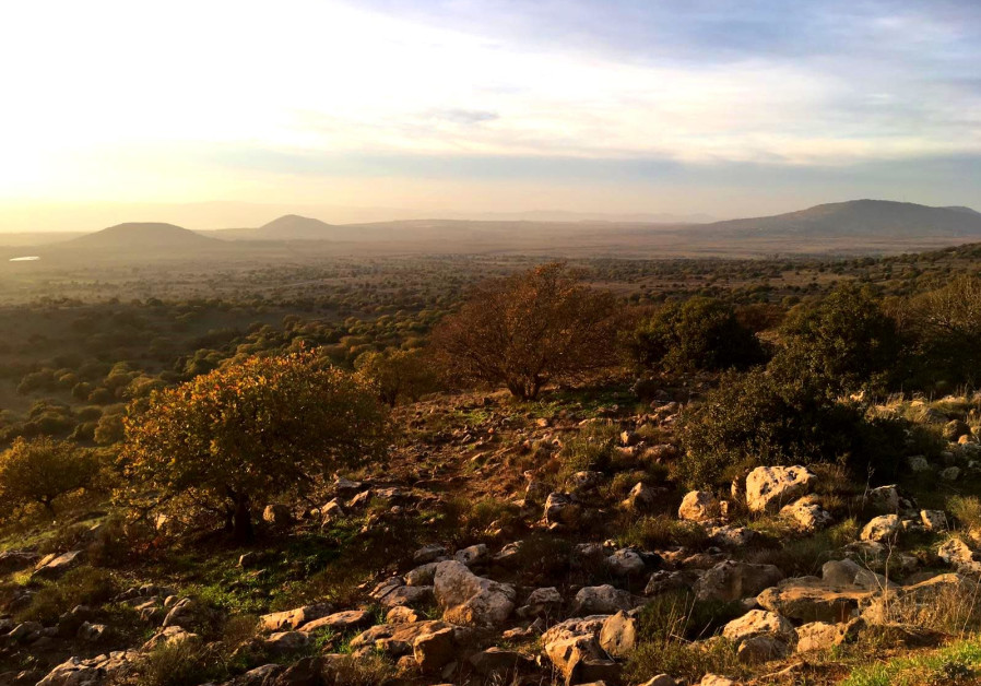 Nature Reserve Tel Hazeka in the Golan Heights