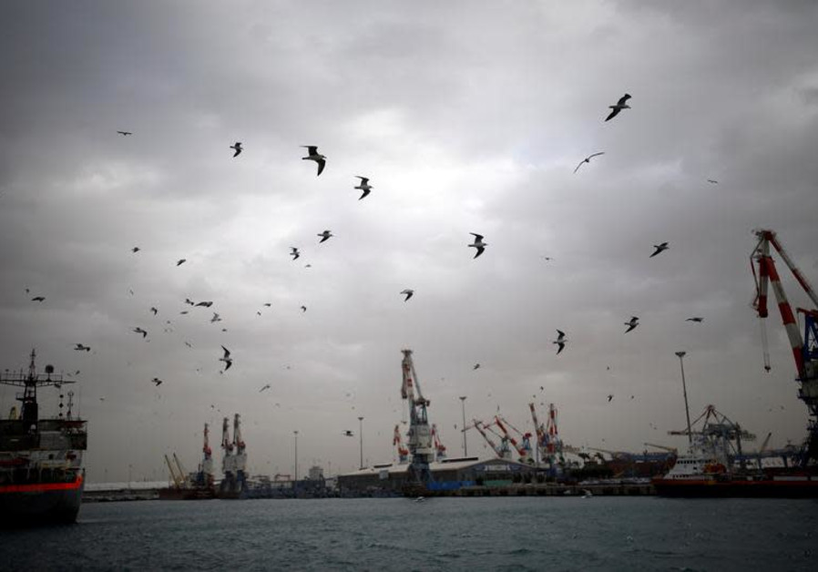 A general view shows seagulls in Ashdod port as a storm approaches Israel's shores January 4, 2018.