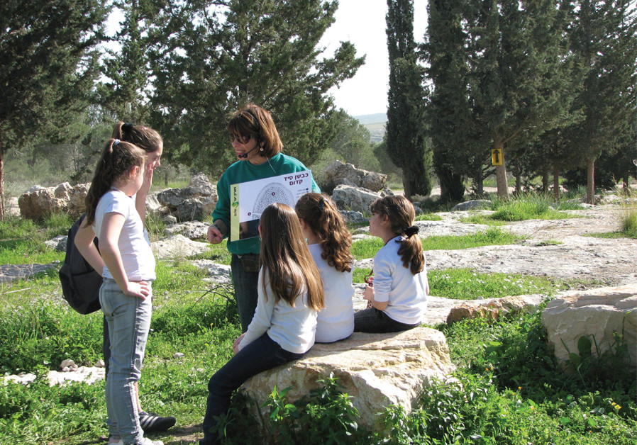 Explore Shoham Forest with beautiful blossoms and gushing streams