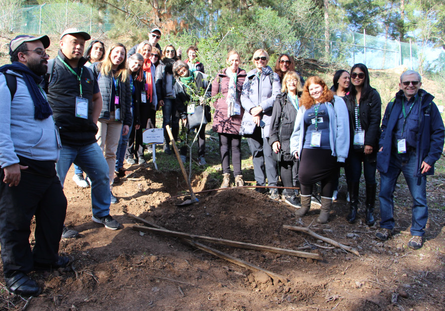Educators from Australia and New Zealand plant trees at the Tzippori Field and Forest Centre