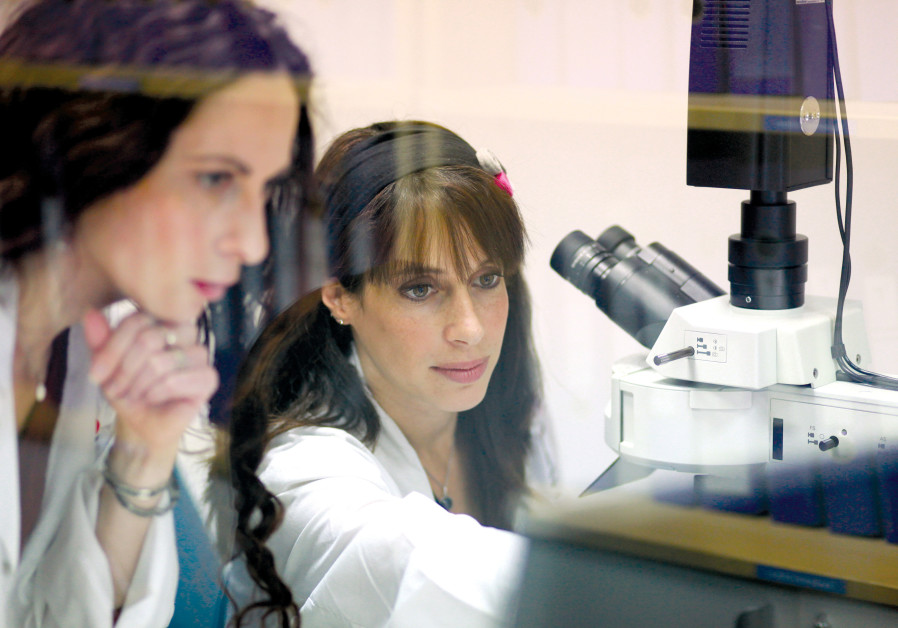 A cure for cancer? - Israel News - Jerusalem Post