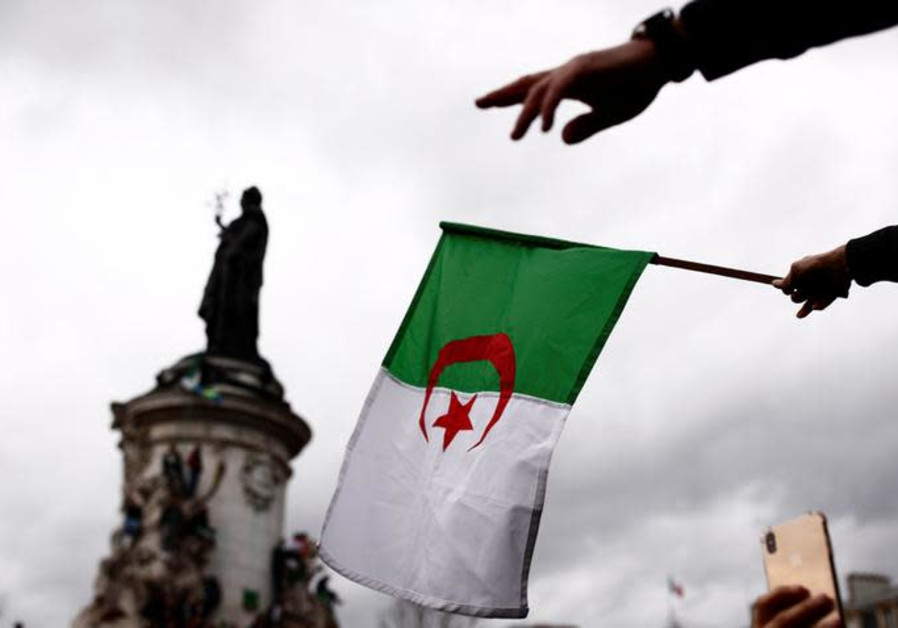 A demonstrator waves an Algerian flag