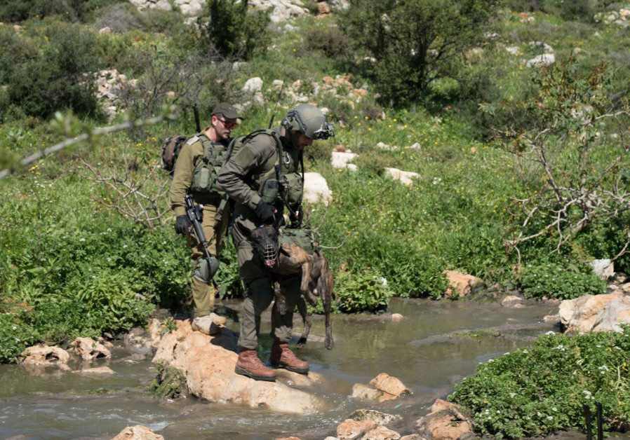Manhunt for Ariel terrorist (IDF SPOKESPERSON'S OFFICE)