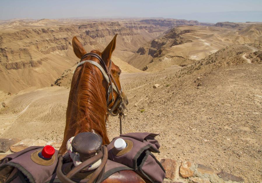 View over the Tzeelim Kenyon, Judean Desert