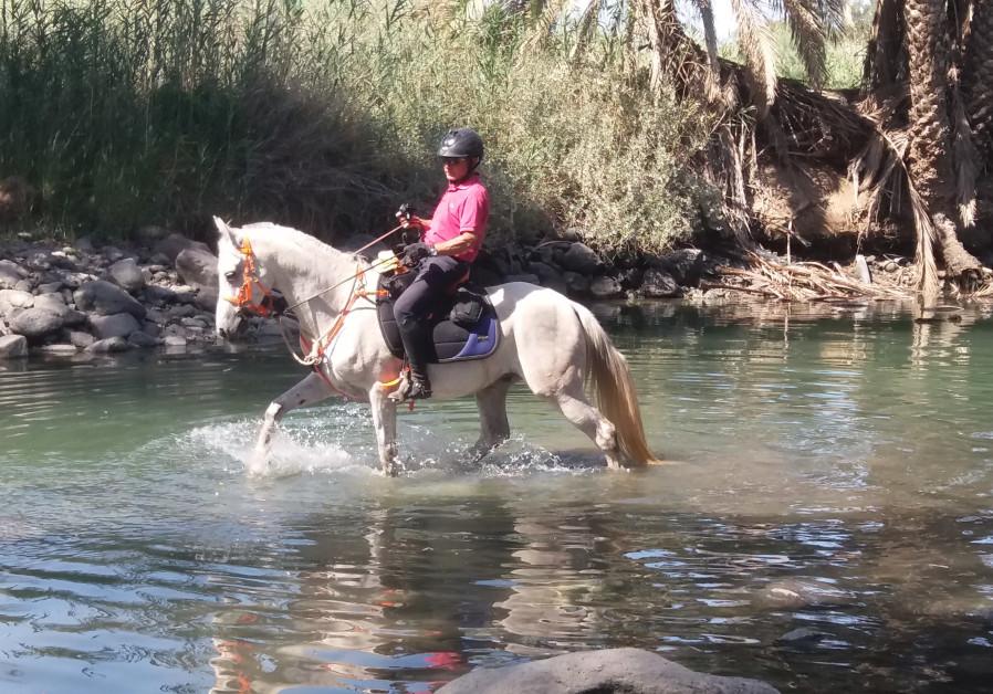 Pilgrim ride on the Jesus Trail / Courtesy