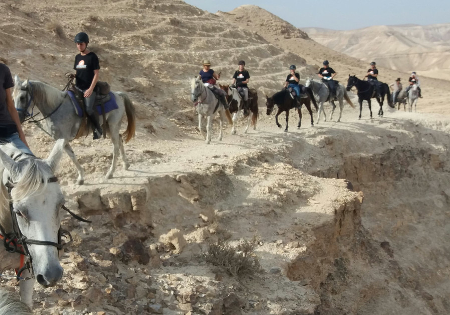 A camel trail in the Judea Desert