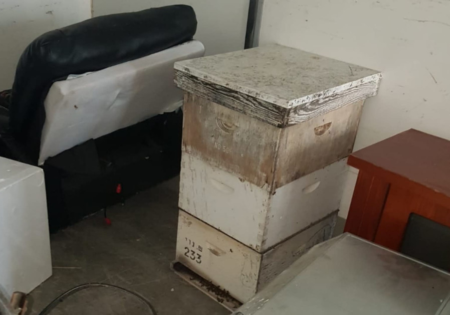 Beehive theft stings suspects' hopes for cultivation