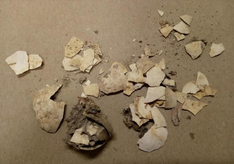First Temple-era eggshells offer crack at historical eating habits