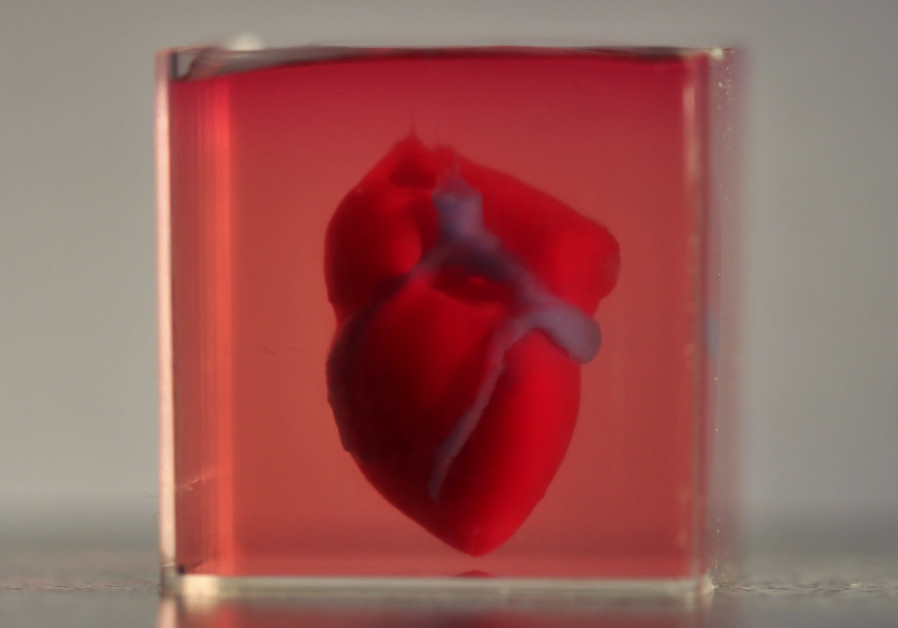 Israeli scientists 'print' first 3D heart