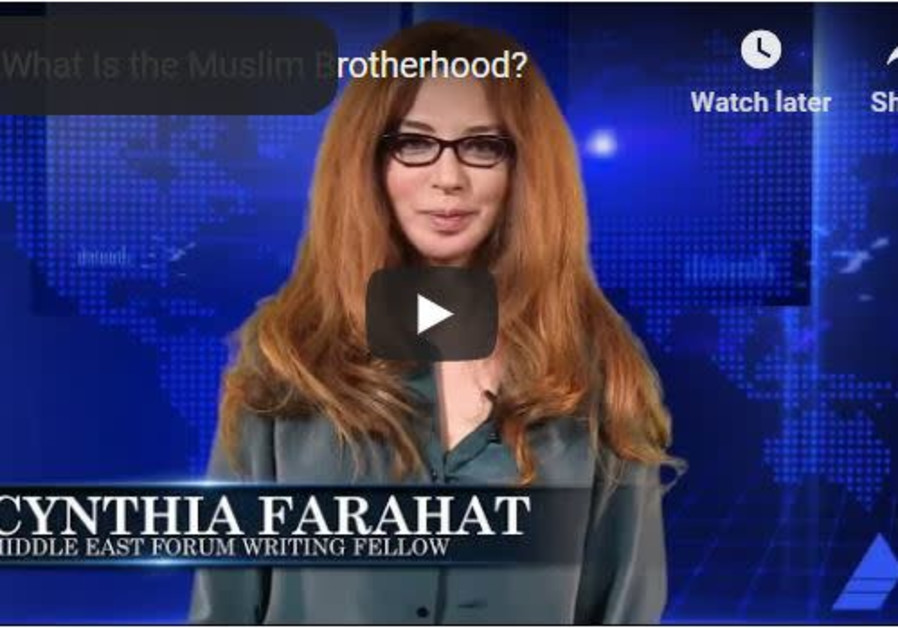 How much do you know about the Muslim Brotherhood? video report