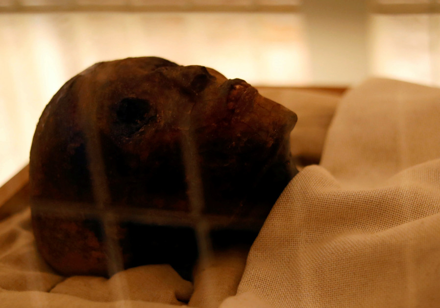 Gazing from the realm of the Dead: The past and present of mummies